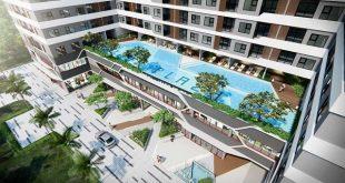 Hồ bơi lớn thiết kế trong dự án